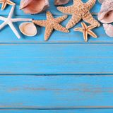 Tropical beach summer starfish background seashore border stock images