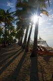Tropical beach with sunlight Stock Photos