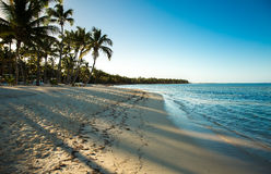 Tropical beach in a sunny day Royalty Free Stock Images