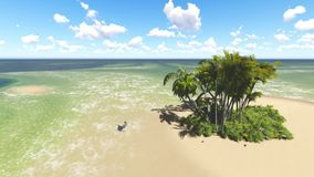 Tropical beach in sunny day. Palms and blue sky stock footage