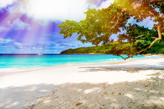 Tropical beach on the sunny day Stock Photos