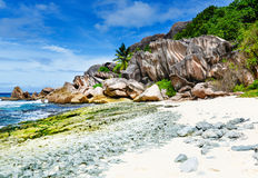 Tropical beach on the sunny day. Photo of a tropical beach on the sunny day Stock Photo