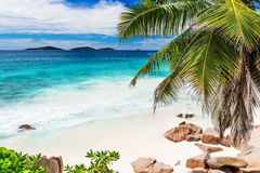 Tropical beach on the sunny day. Photo of a tropical beach on the sunny day Royalty Free Stock Photography