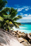Tropical beach on the sunny day. Photo of a tropical beach on the sunny day Stock Image