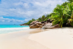 Tropical beach on the sunny day. Photo of a tropical beach on the sunny day Stock Images