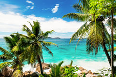 Tropical beach on the sunny day. Photo of a tropical beach on the sunny day Stock Photography
