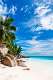 Tropical beach on the sunny day Royalty Free Stock Image