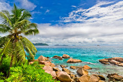 Tropical beach on the sunny day. Photo of a tropical beach on the sunny day Stock Photos