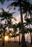 Tropical beach at sunrise Stock Photo