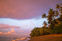 Tropical Beach at sunrise - Costa Rica. Amazing sunrise over Corcovado National Park, Osa Peninsula, Costa Rica Stock Photography