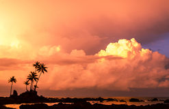 Tropical Beach at sunrise - Costa Rica. Amazing sunrise over Corcovado National Park, Osa Peninsula, Costa Rica Royalty Free Stock Photos