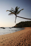 Tropical beach at sunrise Goa Royalty Free Stock Photography