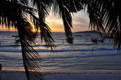 Tropical beach at sunrise, Koh Rong island, Cambodia. Koh Rong island, Cambodia. White sand tropical beach, palm tree and ocean at sunrise Stock Photo
