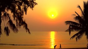 Tropical beach at sunrise. With people walking stock footage