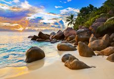 Tropical beach at sunset. Nature background Royalty Free Stock Image