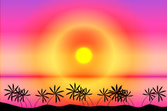 Tropical beach sunset. Tropical beach with palms at sunset Royalty Free Stock Photo