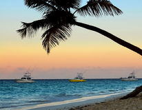 Tropical beach at sunset. Palm tree and fishing boats at tropical beach at sunset. Focus on palm tree Stock Photography