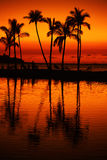 Tropical beach sunset Stock Image