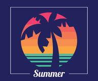 Tropical Beach Sunset, Coconut Tree, In Summer Stock Photos