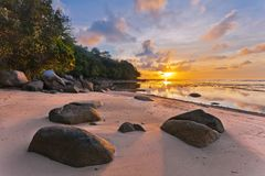 Tropical beach in sunset royalty free stock images