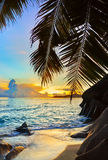 Tropical beach at sunset Royalty Free Stock Photography