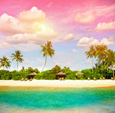 Tropical beach with sunset sky. Paradise island. With palm trees. Vintage style toned photo Royalty Free Stock Images
