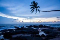 Tropical beach on sunset Stock Photos