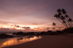 Tropical beach on sunset Royalty Free Stock Image