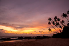 Tropical beach on sunset Royalty Free Stock Images