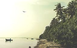 Tropical beach during sunset time at the island. In Maldives Royalty Free Stock Photography