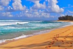 Tropical beach and surf. Surf along a tropical beach in Hawaii Stock Photo