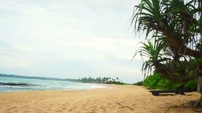 Tropical beach of Tangalle in Sri Lanka stock video