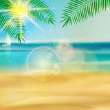 Tropical beach template. Stock Image