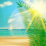 Tropical beach template. Stock Images