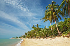 Tropical beach, Thailand Stock Photography
