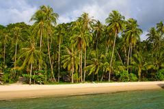 Tropical beach. Thailand Stock Photos