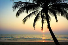 Tropical beach. Thailand Royalty Free Stock Photo