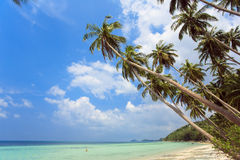 Tropical beach. Thailand, Koh Samui island. Royalty Free Stock Photography