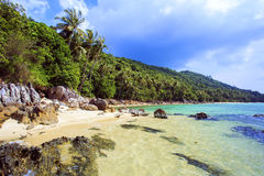 Tropical beach. Thailand, Koh Samui island. Palm tree with sunny day. Taling Ngam Beach. Koh Samui island. Thailand royalty free stock images