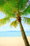 Tropical beach at Thailand - vacation background Stock Image