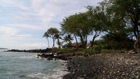 Tropical Beach. Time Lapse of Hawaiian Lava Rock Beach stock video footage