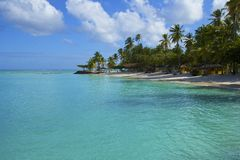 Tropical beach in Tobago, Caribbean Royalty Free Stock Photography