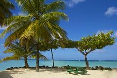 Tropical beach in Tobago, Caribbean Stock Photo