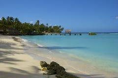 Tropical beach in Tobago, Caribbean Stock Photos