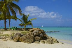 Tropical beach in Tobago, Caribbean Royalty Free Stock Photos