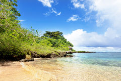 Tropical beach with trees in background Stock Image
