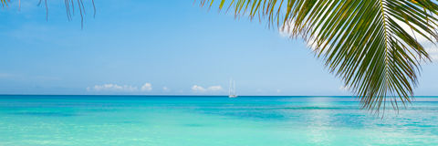 Tropical beach Stock Images