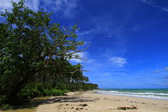 Tropical beach at Ujung Genteng Indonesia. With blue sky and white sandy beach Royalty Free Stock Photography