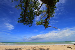 Tropical beach at Ujung Kulon Indonesia. With blue sky and white sandy beach Royalty Free Stock Photo