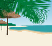 Tropical beach. With umbrellas and palms Royalty Free Stock Image